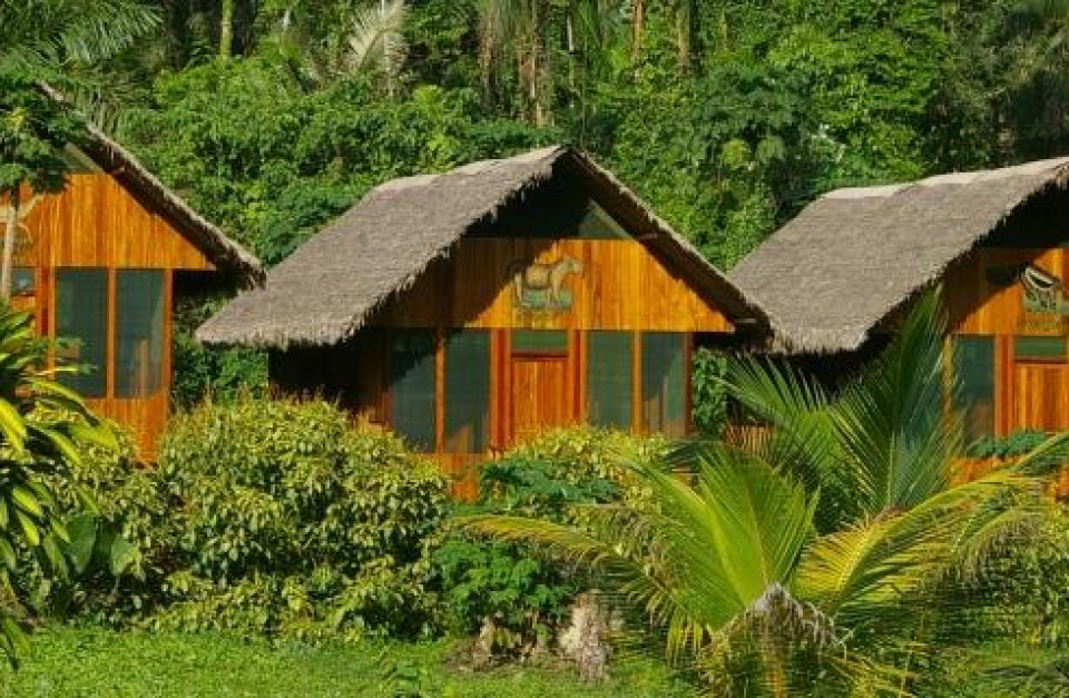Amazonie, découverte luxe